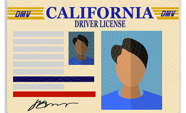 Driver's licenses pose new data security risks